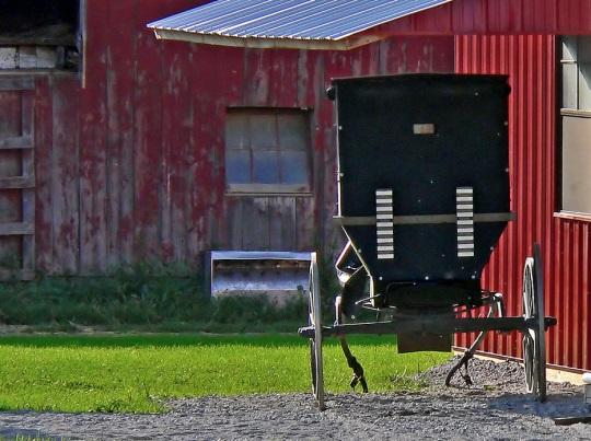 Kenton Amish Affiliation