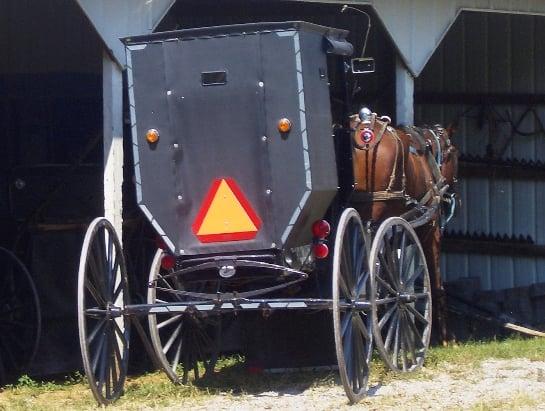 kentucky amish buggy