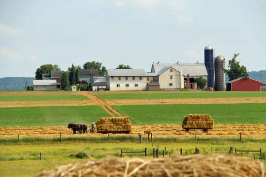 12 Amish Farms Where You Can Stay Overnight (Lancaster County – 2019)