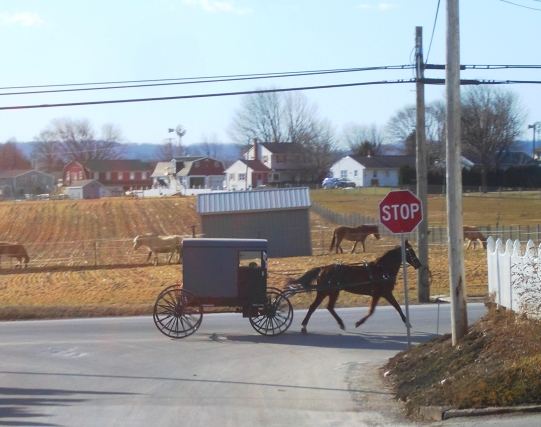 lancaster county amish carriage