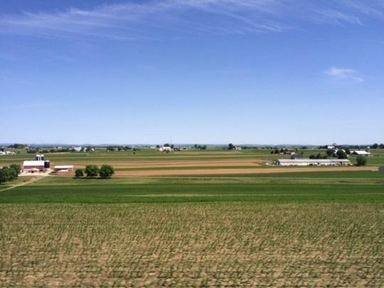 lancaster-county-field-june