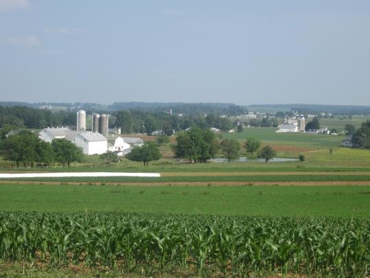 Lancaster County June