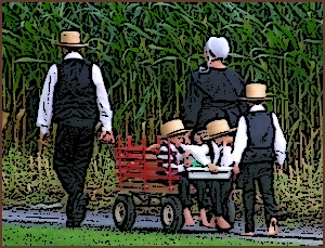 Lancaster Family Amish Infographic