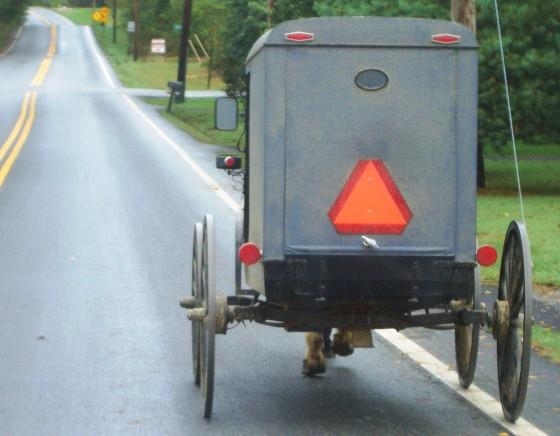 maryland amish buggy