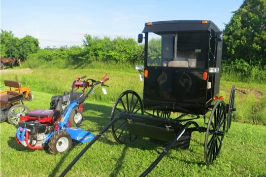 Mennonite Buggy Haiti Auction