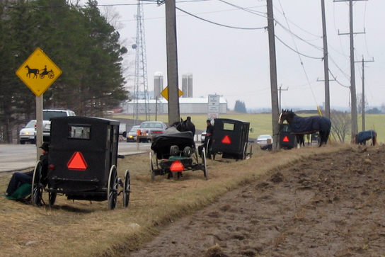 mennonite buggy sign