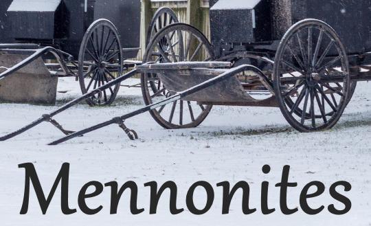 Mennonite Carriages Ontario Ca.
