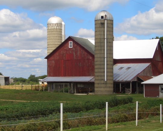 Mennonite Farm Nappanee