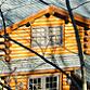Michigan Amish Cabins