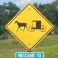 MI Buggy Sign