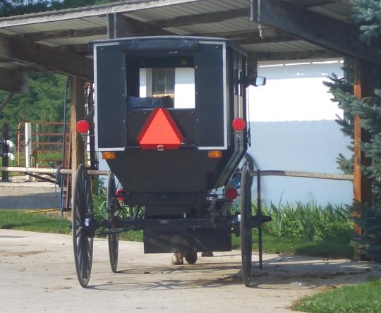 Nappanee Amish Buggy