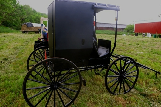 New Buggy Amish Auction