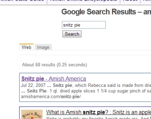 New Search Amish America