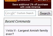 New Search Box Amish America