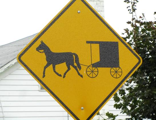 new york amish buggy sign