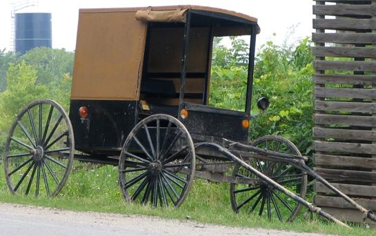 new york amish buggy