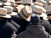English person in Amish crowd