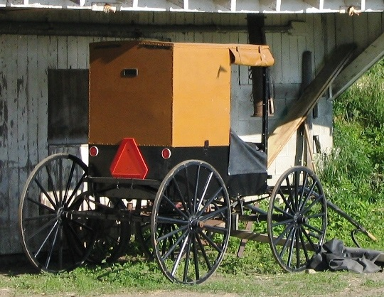 NY Amish Mayville Brown Buggy