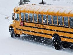 ny amish school busing