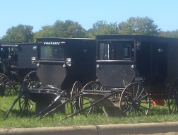 ohio amish geauga county buggies