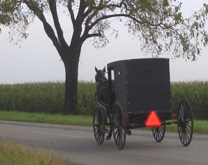 old order mennonite buggy pa