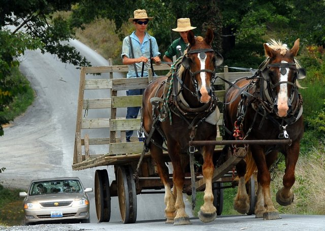 Southern Amish