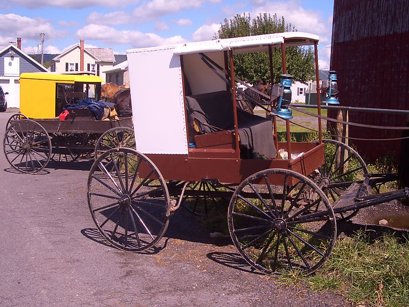 Nebraska and Byler Amish buggies Big Valley Pennsylvania