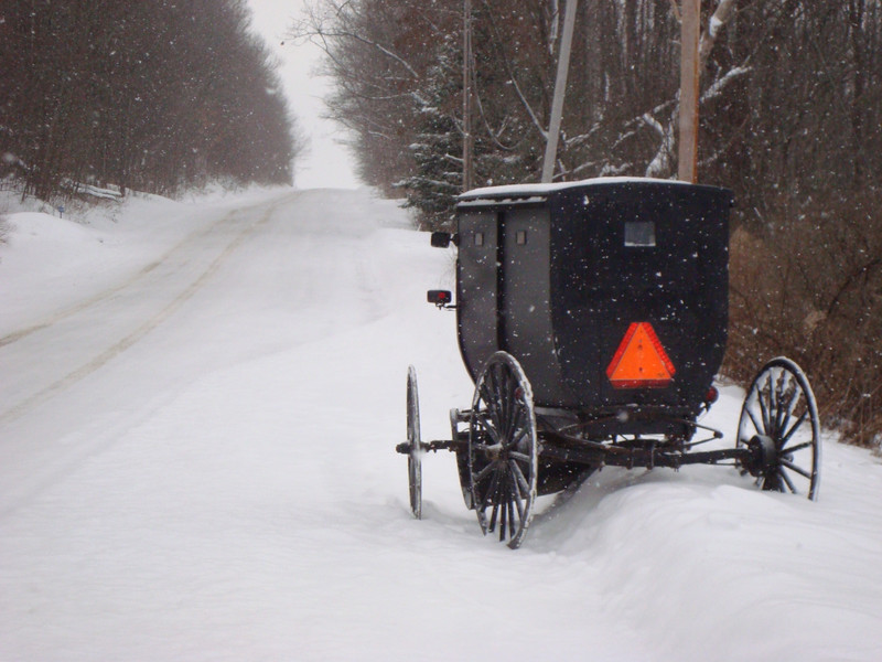 Amish buggy snow