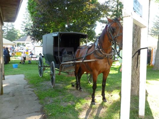 oswego county ny amish pulaski