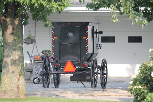 parked-buggy-amish-il
