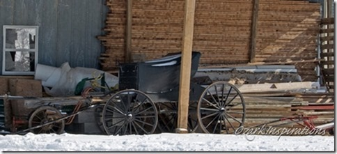 parked-open-amish-carriage