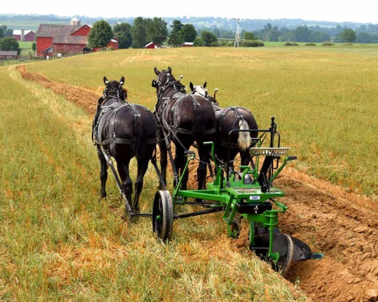 A Closer Look At Amish-Owned Pioneer Equipment (Wayne County, Ohio)
