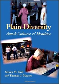 Plain Diversity Nolt Meyers Cover