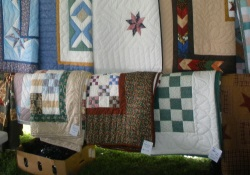 Quilt Selection Amish Auction