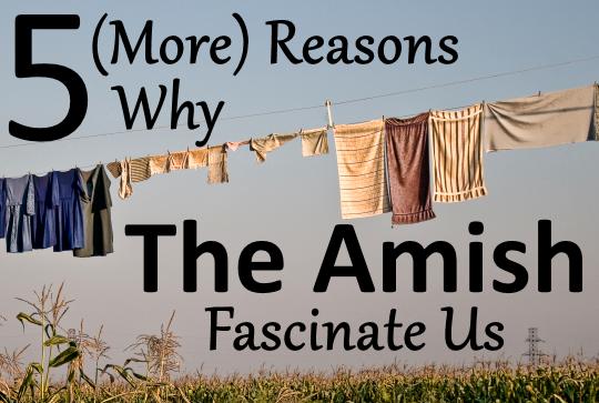 Reasons Amish Fascinate