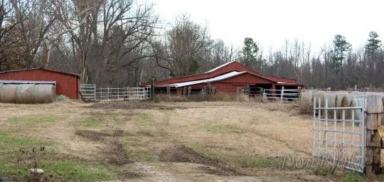 Rector AR Former Amish Farm