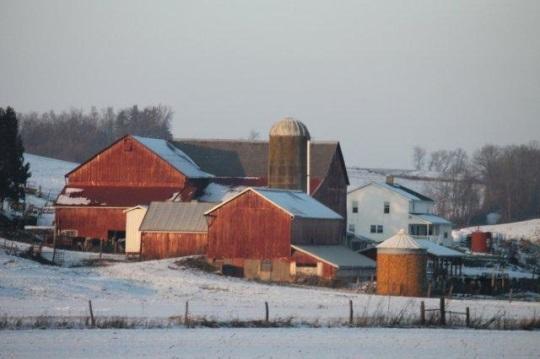 red-barn-farm