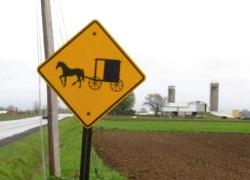 Romulus NY Amish Settlement