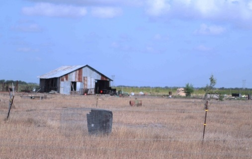 shed-texas-amish