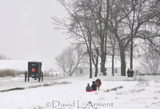 snow-sledding-arment-photo