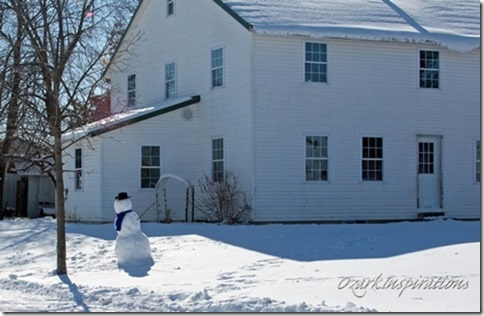 snowman-in-front-of-house