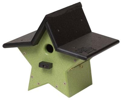 star-bird-house