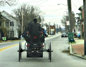 Strasburg Amish Youth Carriage Rider