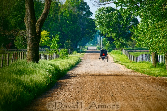summer-buggy-arment-photo
