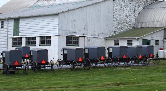 5 Facts On The Lancaster County Amish Population