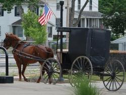 Swartzentruber Amish PA