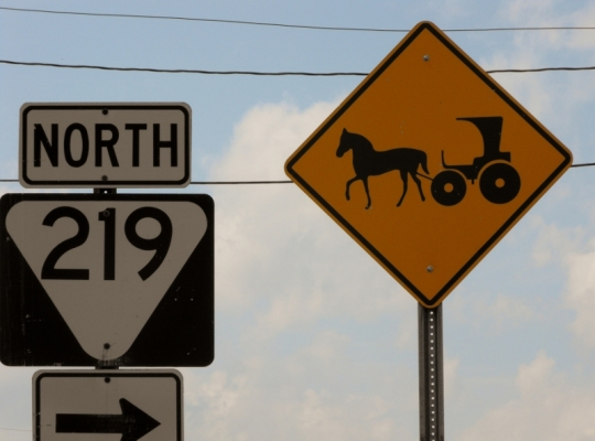 Tenn Amish Buggy Sign