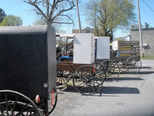 three-buggy-styles-belleville