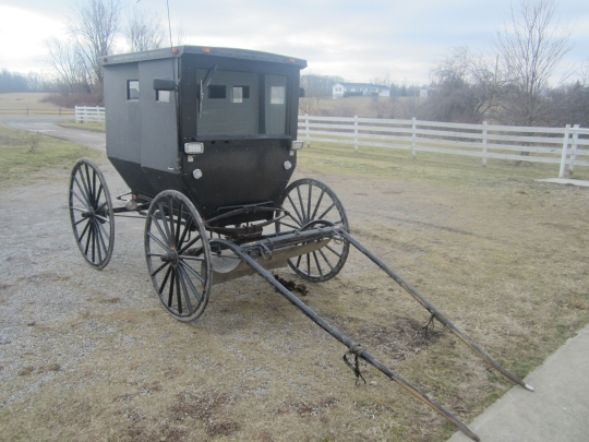 Two Seat Amish Buggy