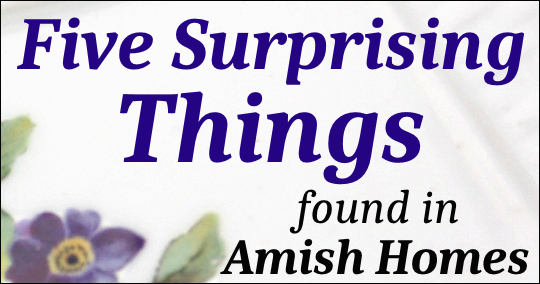 unexpected-items-amish-houses